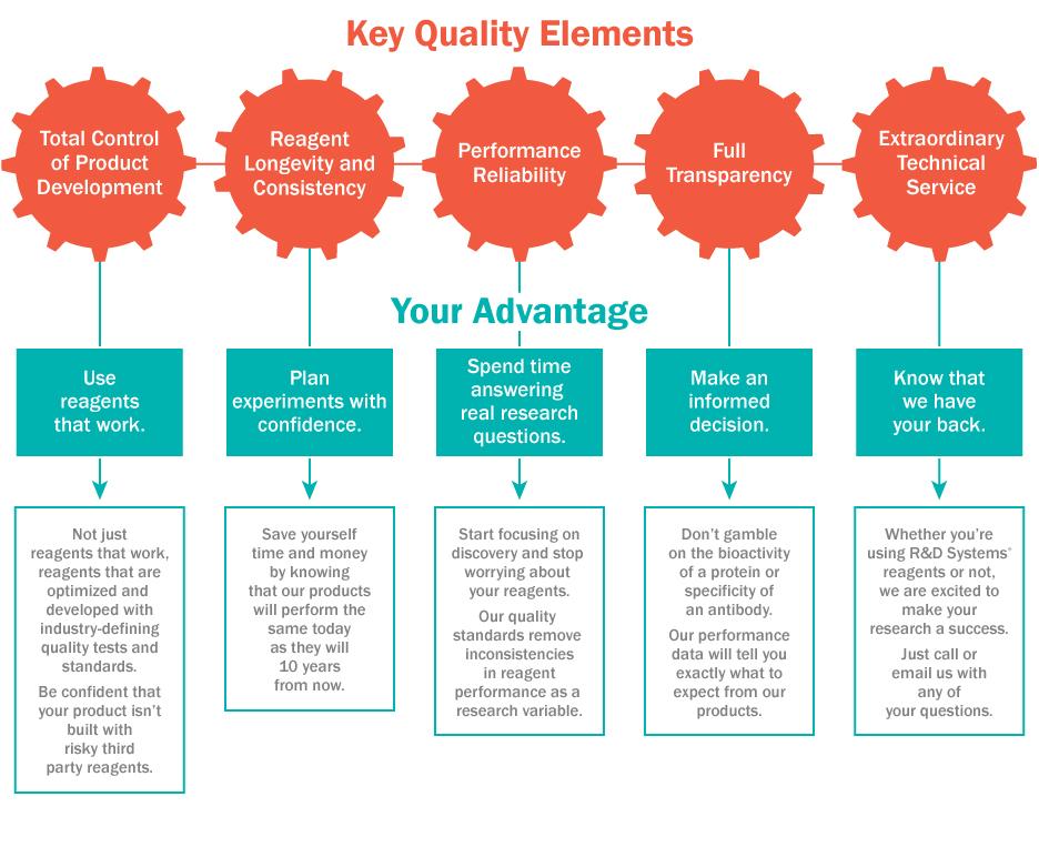 Key quality elements