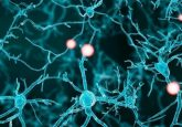 Electrical stimulation before nerve repair surgery could accelerate nerve regeneration