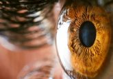 Stem cell therapy for corneal damage demonstrates success in clinical trials