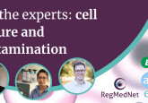 Ask the experts: cell culture and contamination