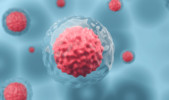 CAR-T cell